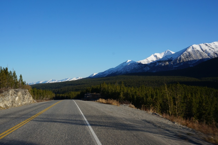 Alaska Highway on my way to Tagish